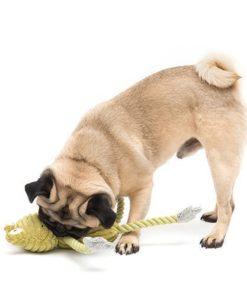 Frederick Dog Rope Toy
