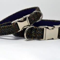 Brown herringbone Harris Tweed Dog collar