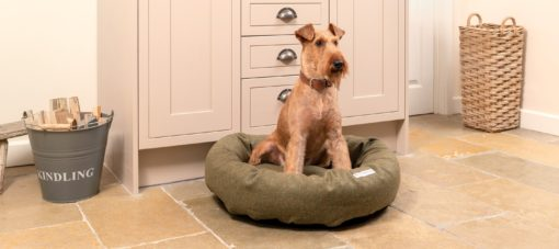 Luxury Dog Beds UK. Green donut dog bed. . Mutts and Hounds.