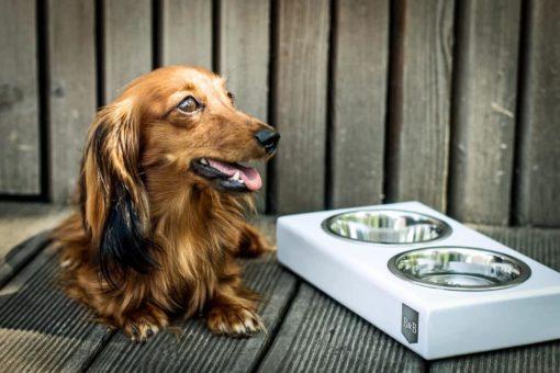 White Luxury Wooden Dog Bowls