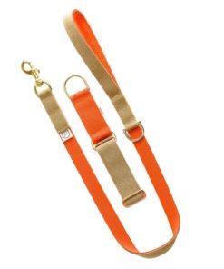 Beige and orange luxury webbing dog collar.