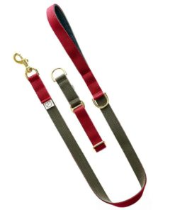 Burgundy and Olive luxury webbing dog collar.