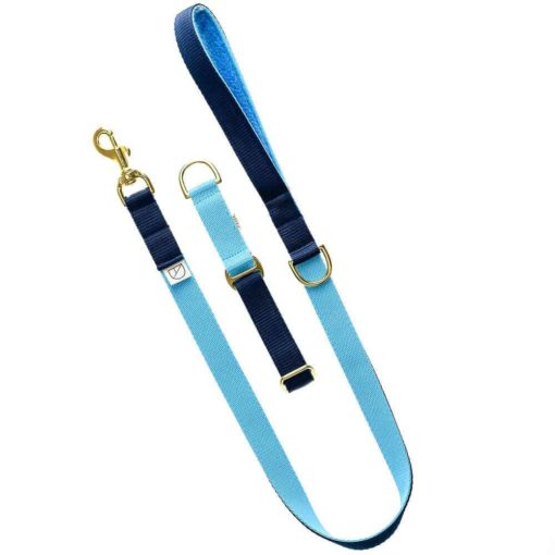 Navy & Sky Blue Webbing Luxury Dog Collar and lead