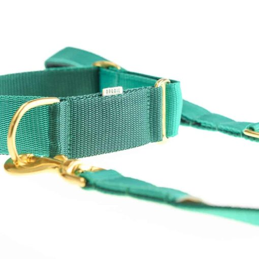 Emerald and Forest Green Webbing Luxury Dog Collar and lead