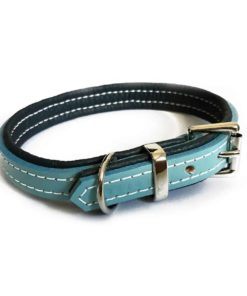 Baby blue and navy blue padded dog collar. Luxury leather.