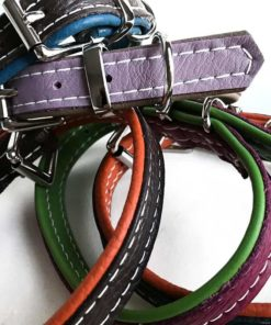Puppy and Small Dog Collars in Leather or Tweed