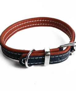 Navy and orange soft padded luxury leather dog collar