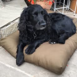 Khaki luxury deep filled dog cushion bed