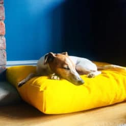Bright Yellow Luxury deep filled dog cushion bed.